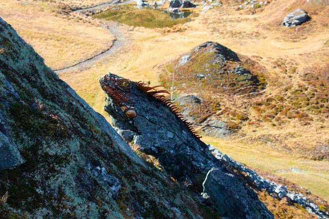 Mystische Felsenwesen
